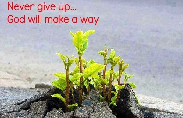 Never Give Up...There is always a way!